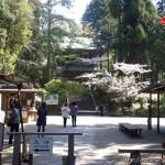 Crónicas de Japón 2009 (Día 13 – Kamakura y Yokohama)